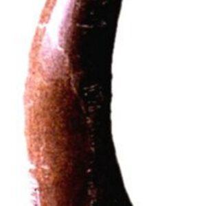 Caliza de Borriol (1,70m)