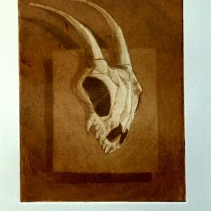 Cabra (Aguatinta)